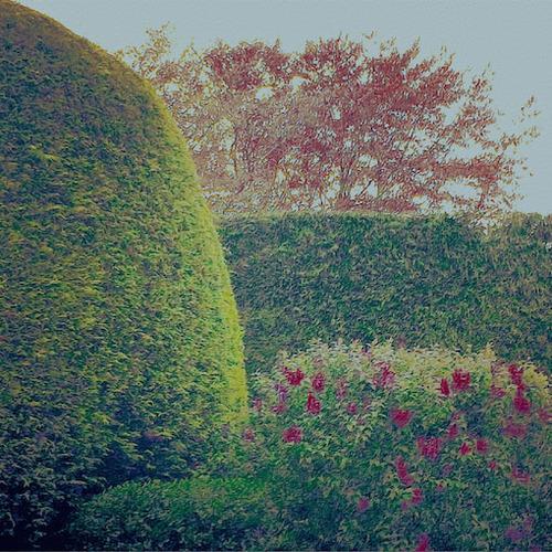 secretgarden77.jpg
