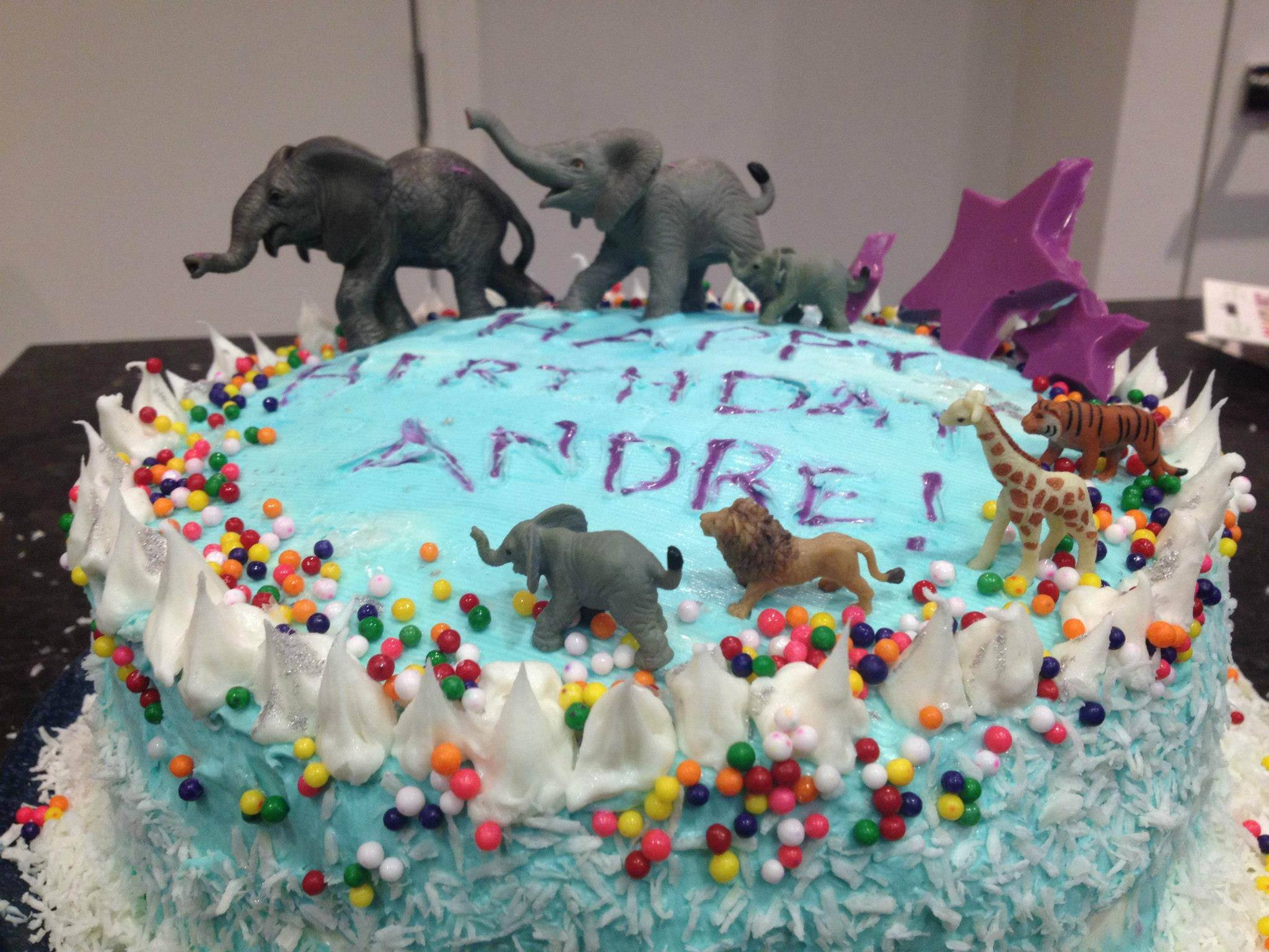 andre's circus-carnival-elephant family, 5 layer, rainbow surprise ice cream cake