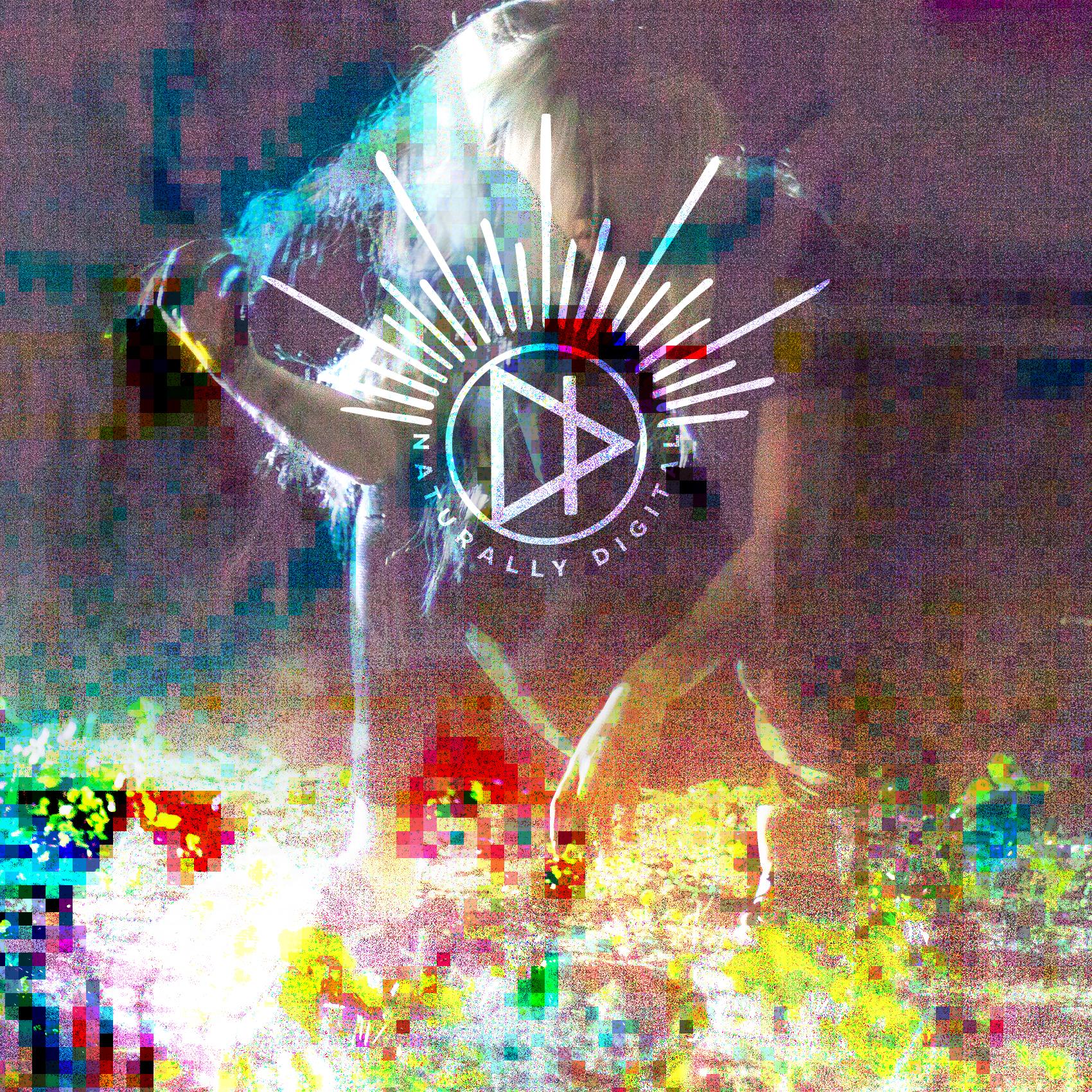Naturally Digital mix 2 cover.jpg
