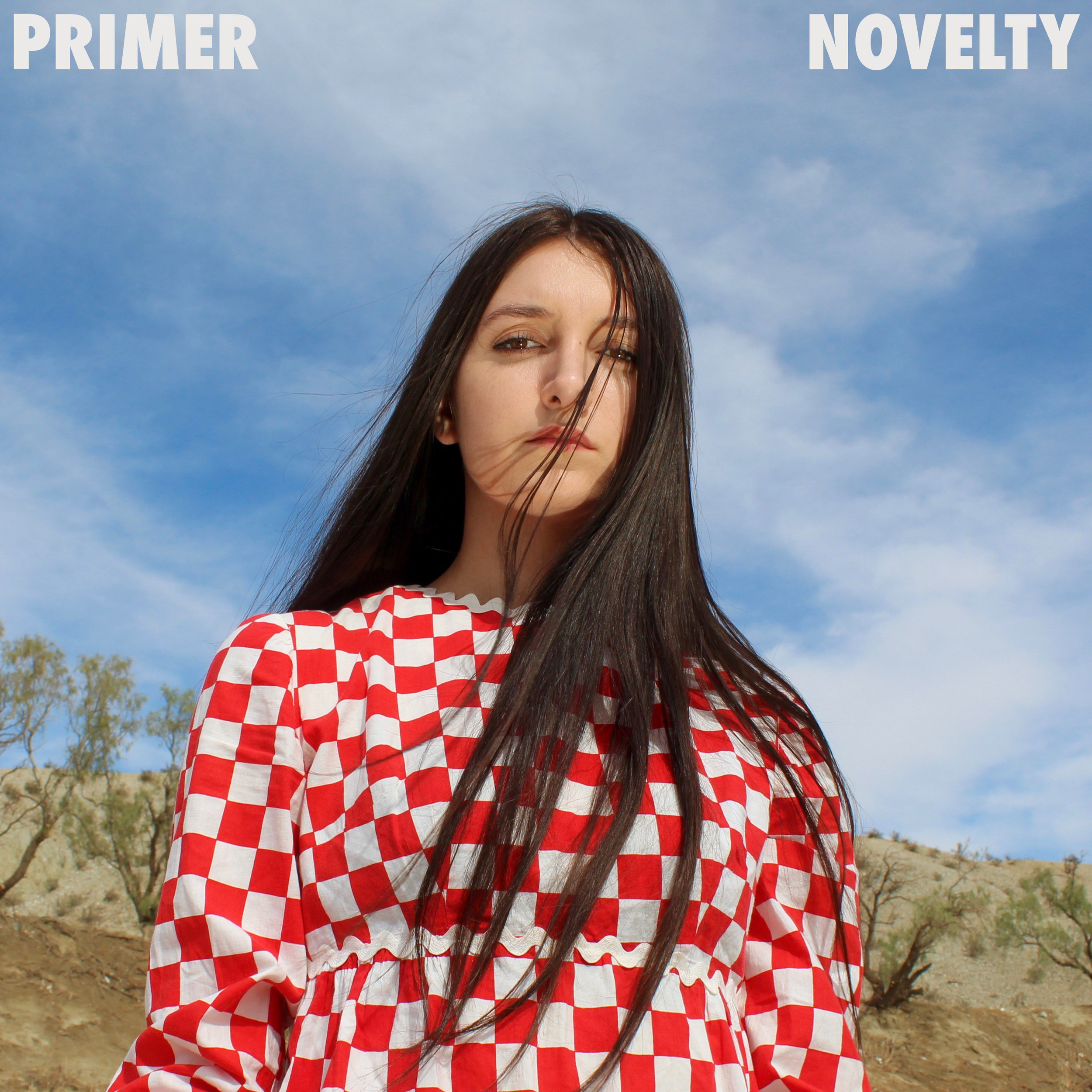 Novelty - Pre-order Primer's debut album Novelty, and get a free download of the two singles Anesthetized and A Broken Person's Game.The album releases everywhere digitally on March 1st, 2019.