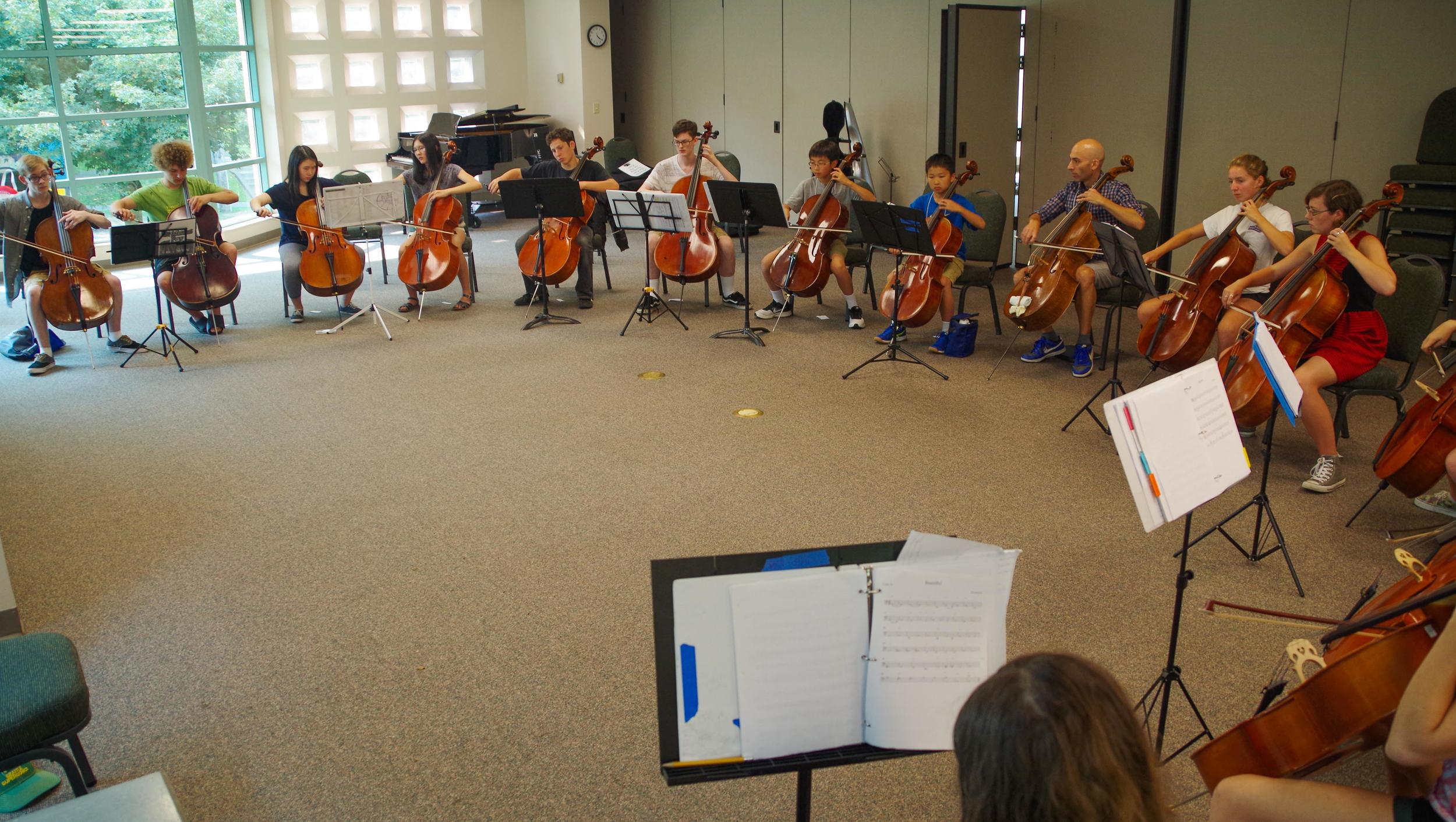 Cello ens.jpg