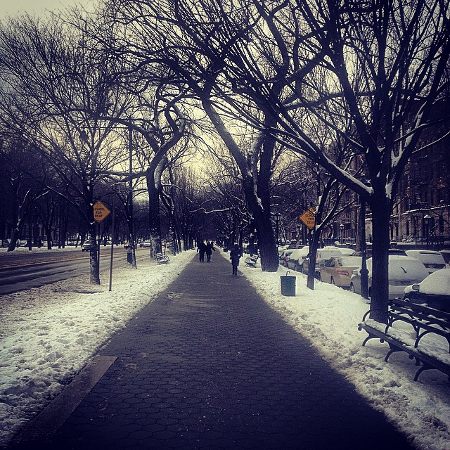 Snowpacalypse or Nah? #brooklyn