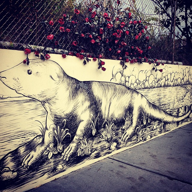 Brooklyn Zoo. #kooleyhigh #streetart #igers #uptooearly #instagood #brooklyn