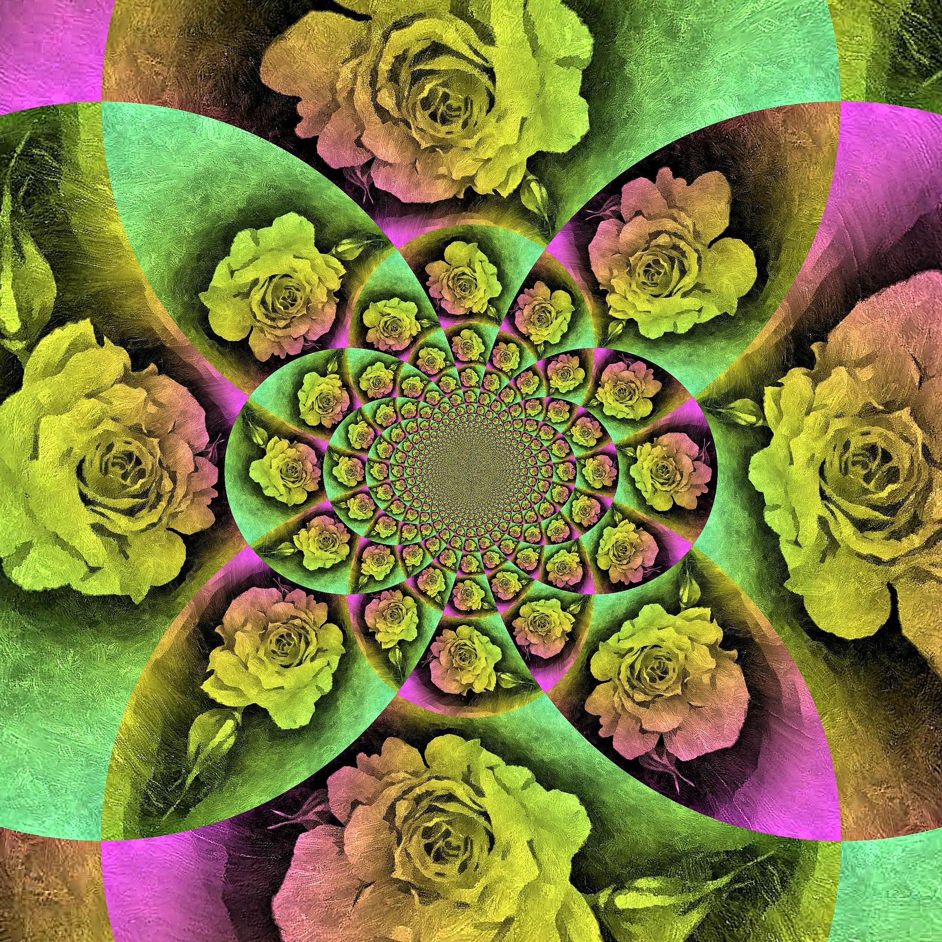 style&kyle    #rose #art #modern #desert #plant #roses #flower #yucca #yuccafest #music #artandmusic #create #active