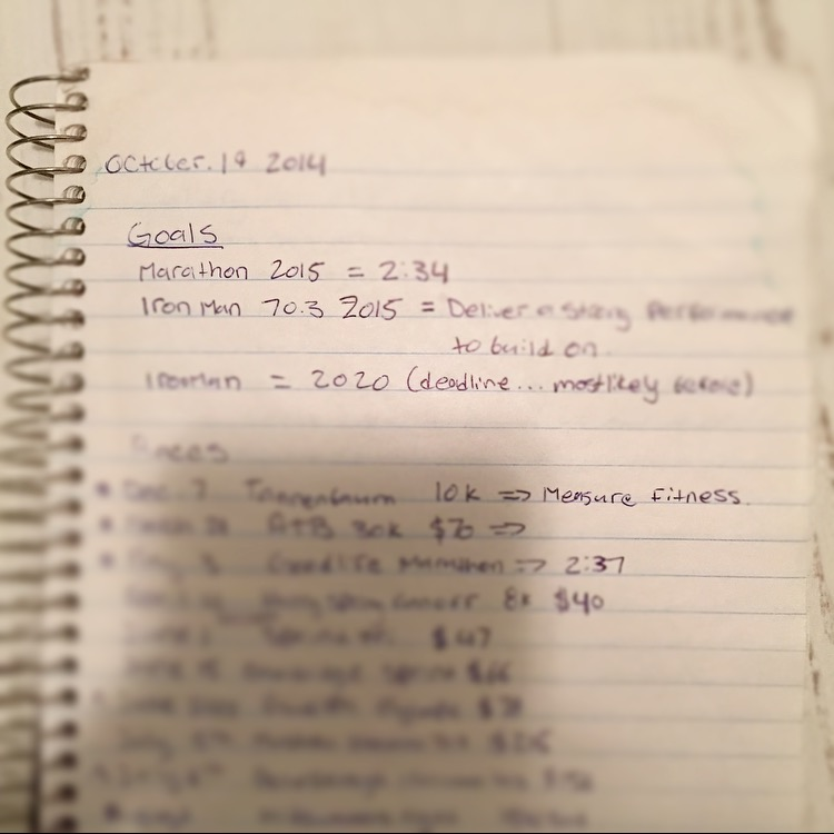 Writing down goals is a practice that I have taken after Krista DuChene .