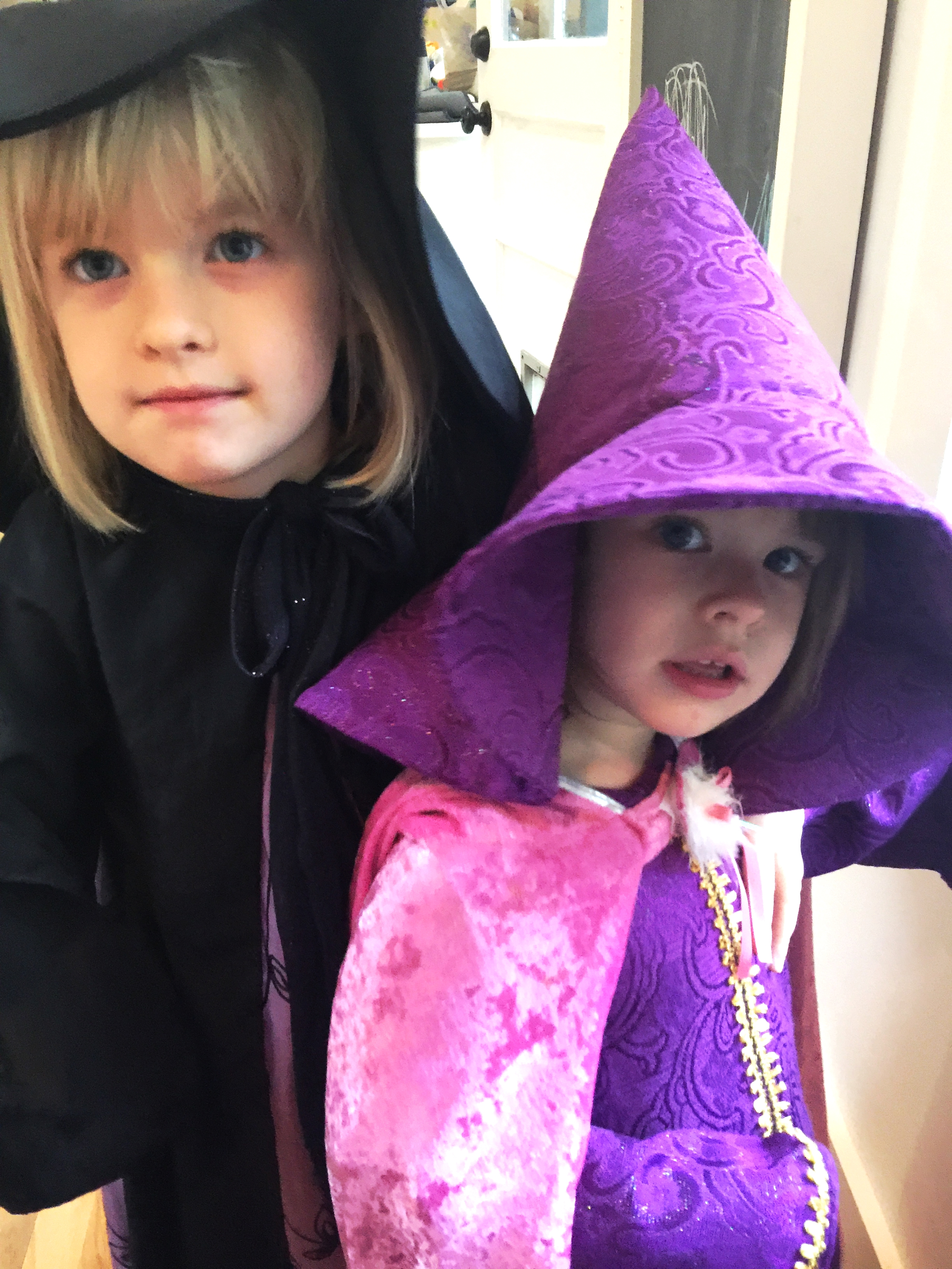 My girls in their fabulous Grandma-made costumes