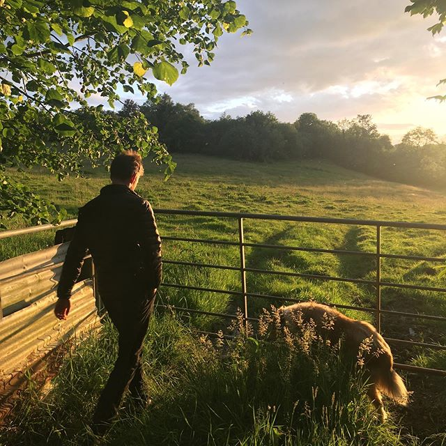 We will miss our sunset walks through sheep poo. Love you #ireland. #USA, check out our website for tour dates! We hit the road July 18! —-  www.monacoandalameda.com #folkmusic #denvermusicscene #kcmusic #pittsburghmusic #nycmusic #stlouismusicscene #chicagomusicscene #monacoandalameda #muncieindiana #bedfordpa