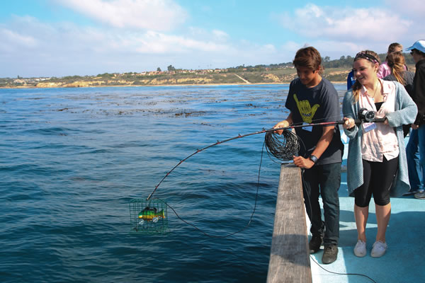 Digital fishing rods help students study fish populations in the kelp forest.