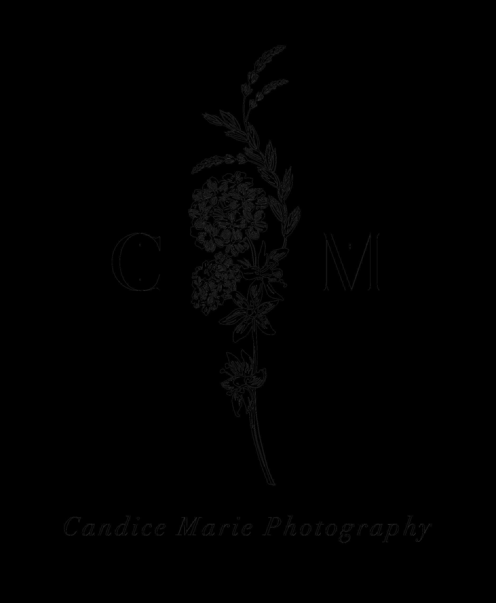 Logo Test 4.png