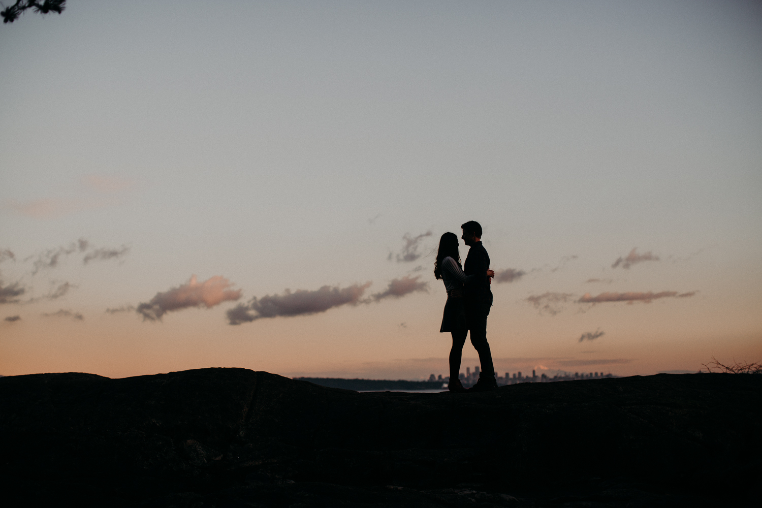 Lighthouse Park Engagement-7033.jpg