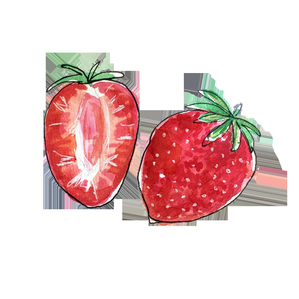 strawberries_june2018_lyndsay.png