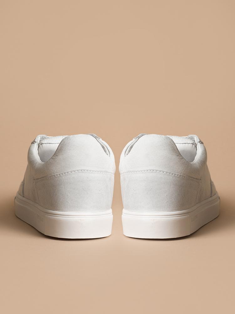 01-White-Back.jpg