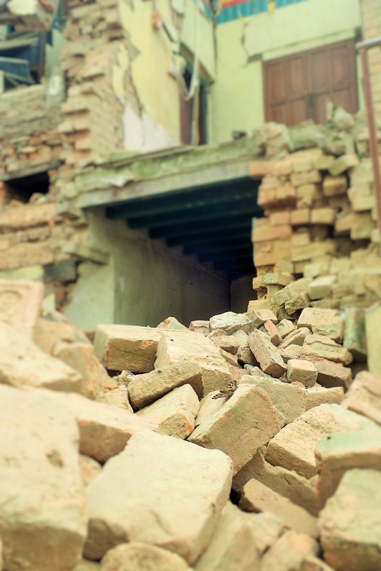 Destruction after the earthquake.
