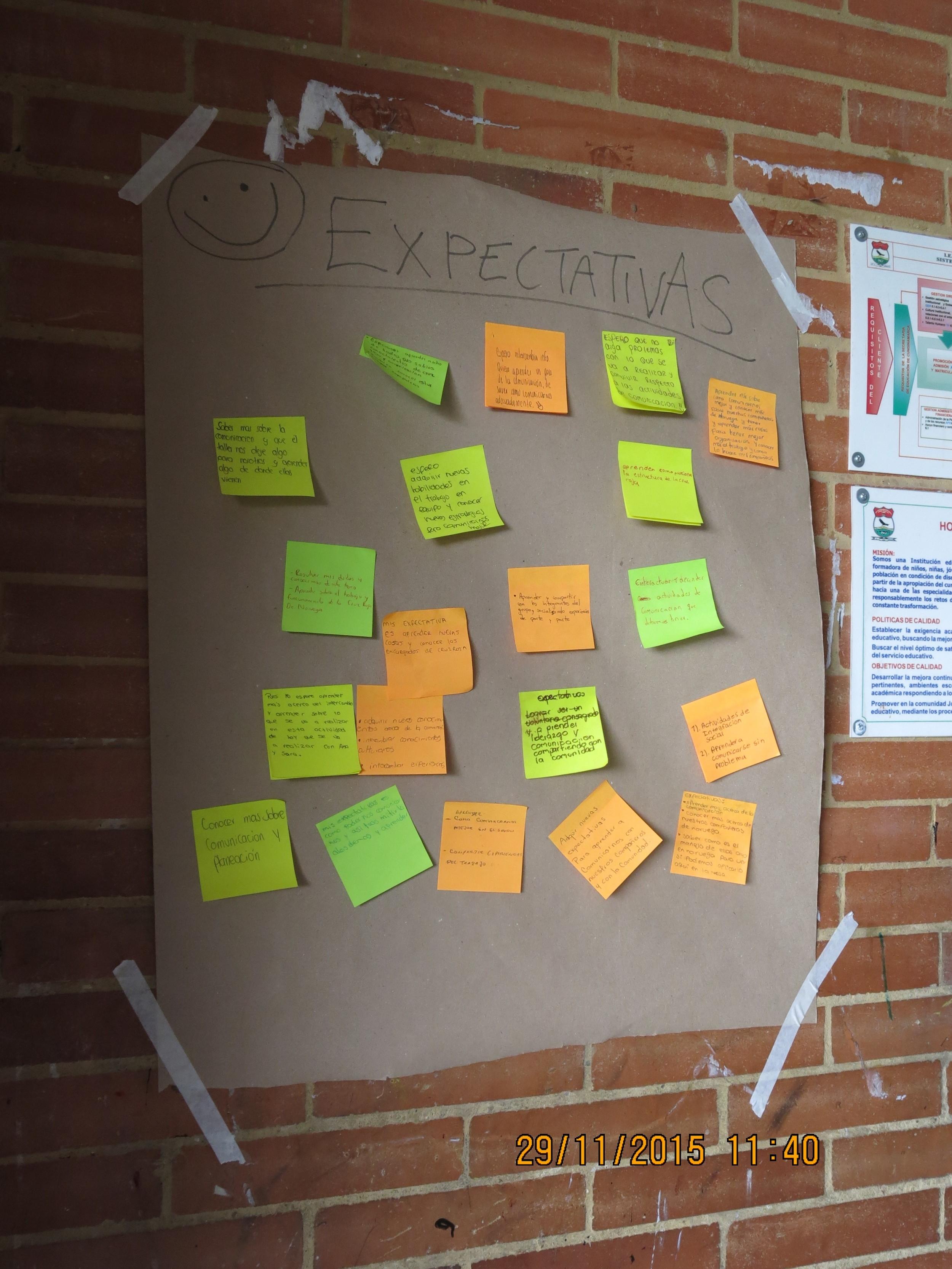 Las expectativas de los participantes / The participant's expectations
