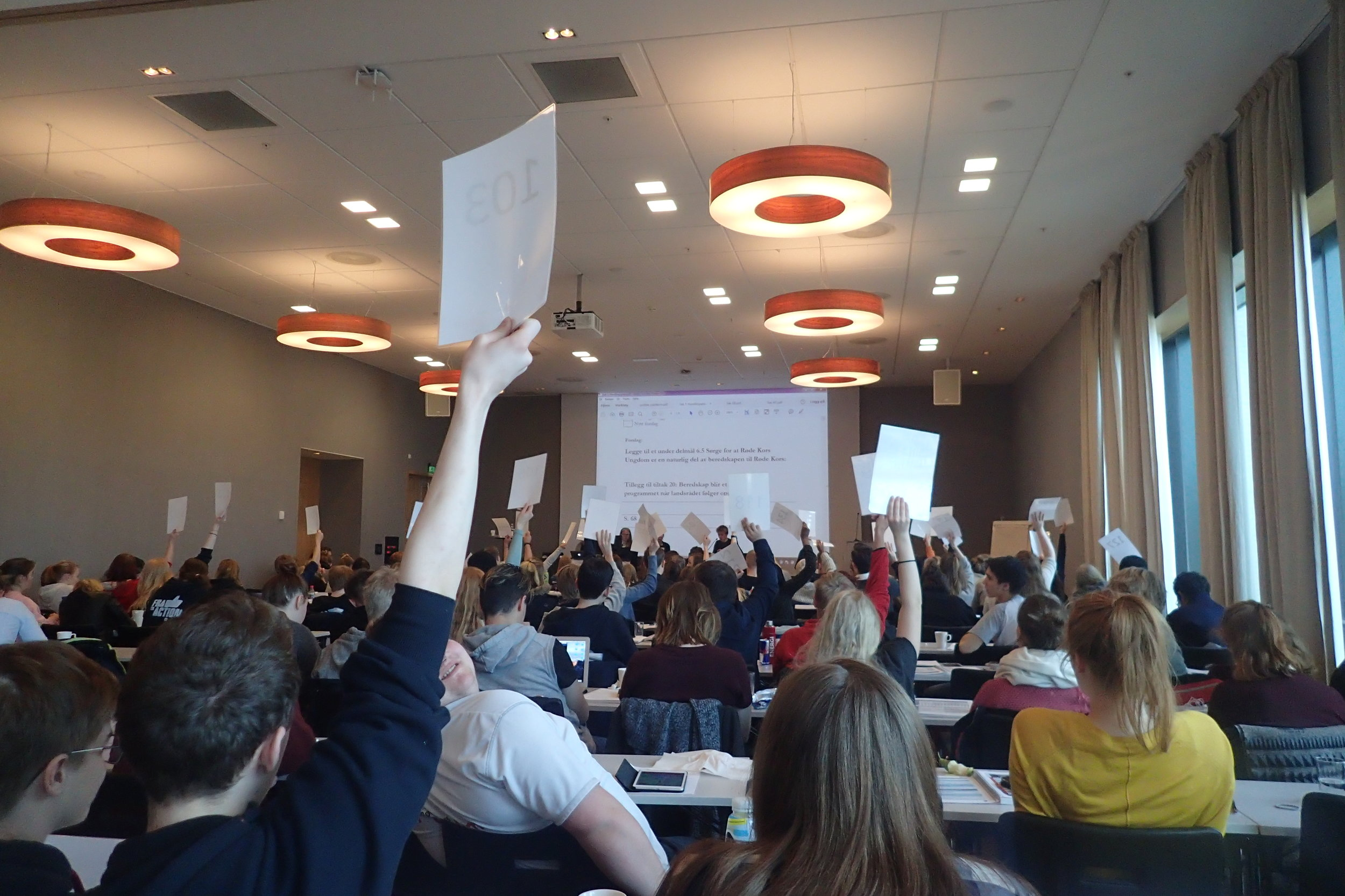 Delegates voting during the election of Country Council