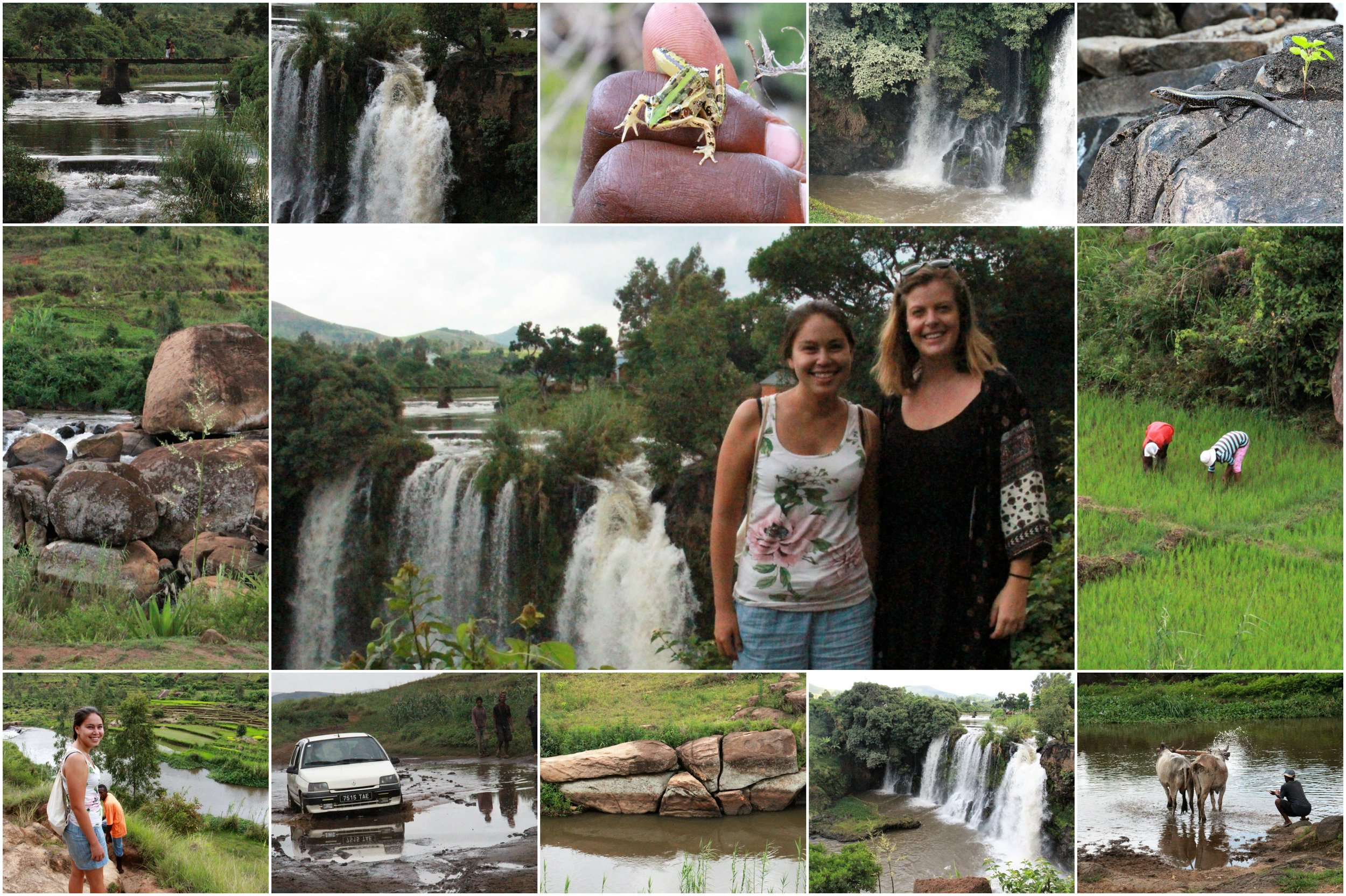 Lily waterfalls