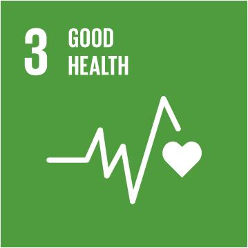 SDG 33.png