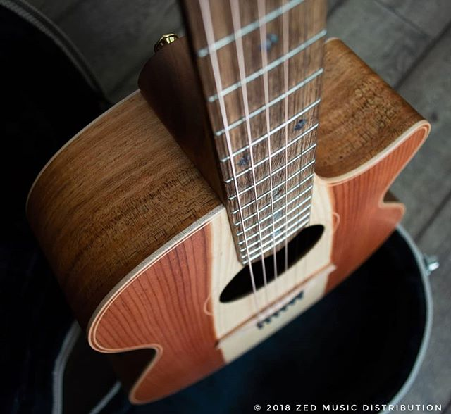 A close up look at the River Sheoak finger board on this beautiful Angel 2 Redwood Blackwood.  Available now! #redwood #california  Contact us here at ColeClarkUK to find out more and get in touch with Zed Music Distribution to find your nearest Cole Clark dealer and get your hands on one! @zedmusicdistribution  Photo and Copyright owned by Zed Music Distribution.  #coleclark #coleclarkguitars #redwood #california #big #grain  #oneofakind #rare #worldsmostnaturalpickup  #acousticguitar #acousticaguitar #acoustic #guitars #guitarist #guitar #guitarsdaily #guitarspotter #guitarsarebetter #guitarcover #zedmusicdistribution #martin #taylor #fender #gibson