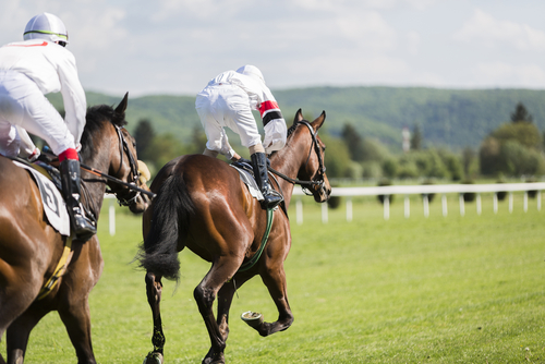 Bath Racecourse  is a stunning venue for horse racing and events, on the hillside on the perimeter the city.