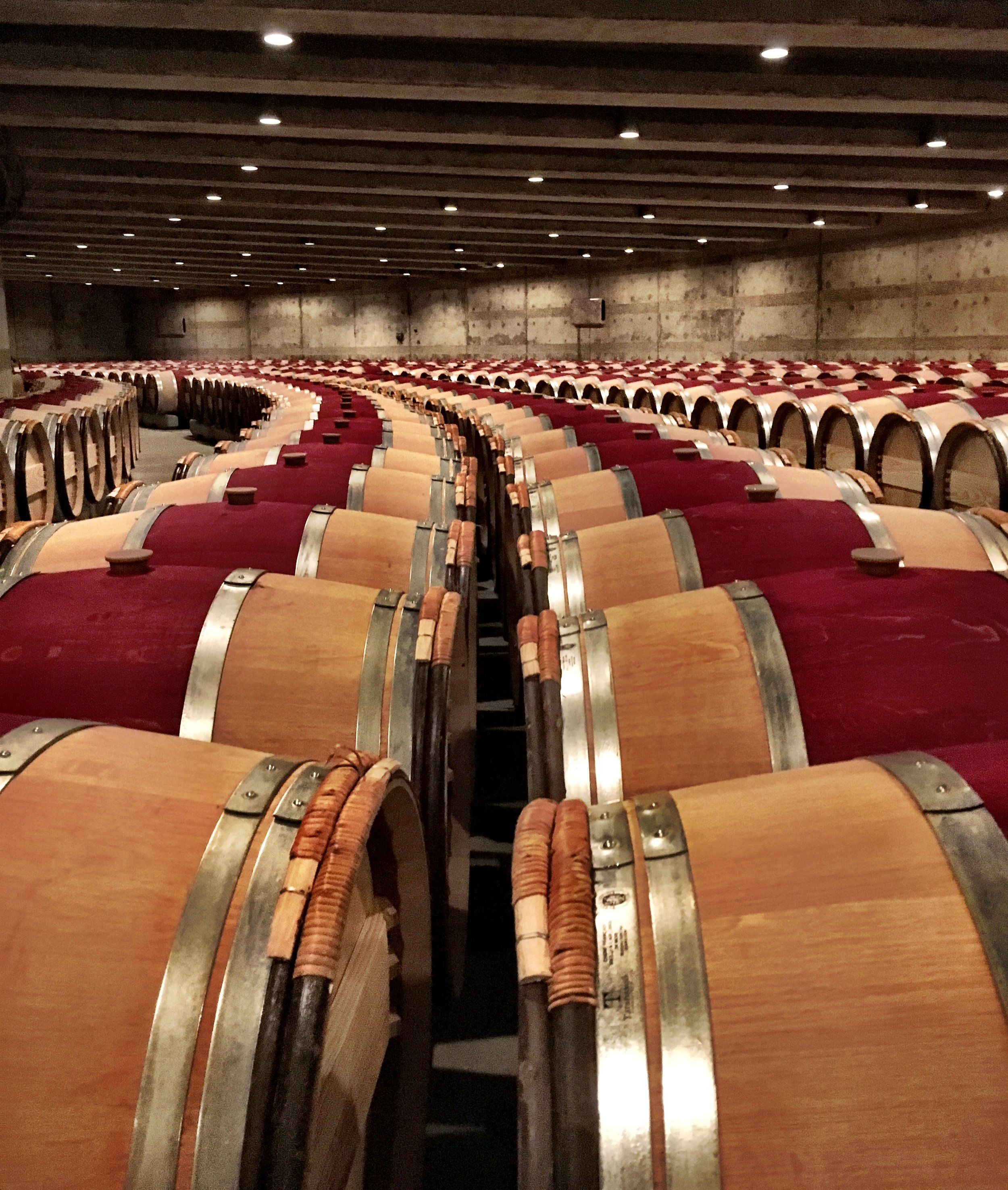 Opus One's wine cellar
