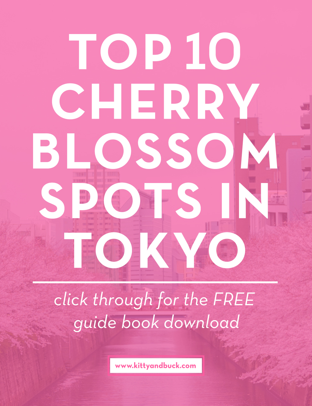 The Top 10 Cherry Blossom Spots in Tokyo - A FREE e-book from Kitty & Buck - click through to download this e-book for free, and see the most amazing cherry blossoms this spring in Tokyo! Includes pros and cons for each location and details on train lines and how to get there.