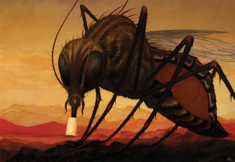 The Dengue Stopper