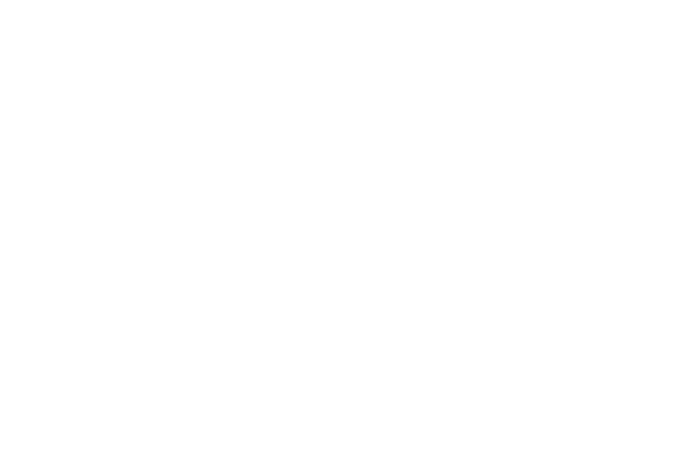 cne.png