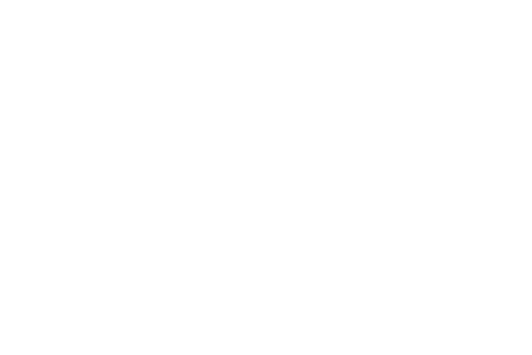 cdpe.png
