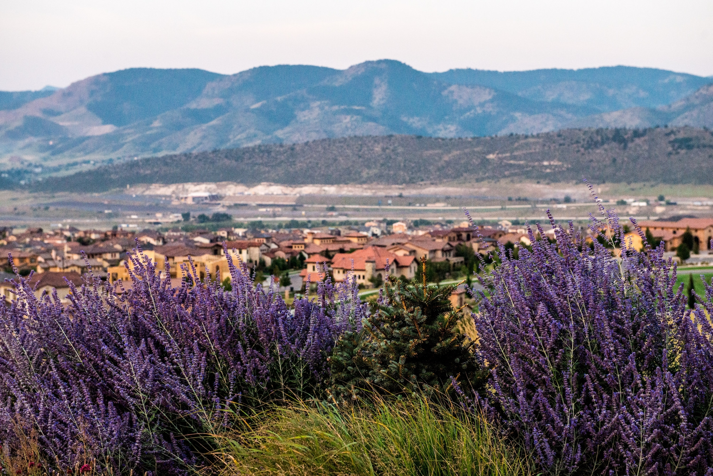 Home sales are strong in Solterra, the Lakewood foothills community west of Denver