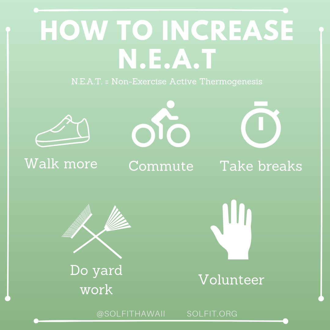 Increase NEAT.png
