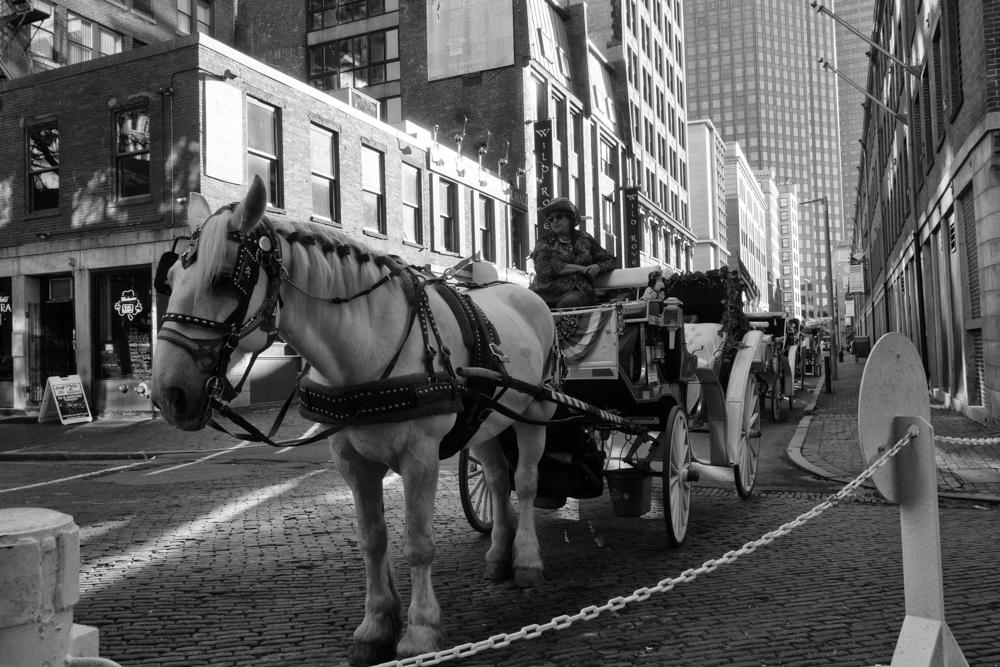 Boston Carrage