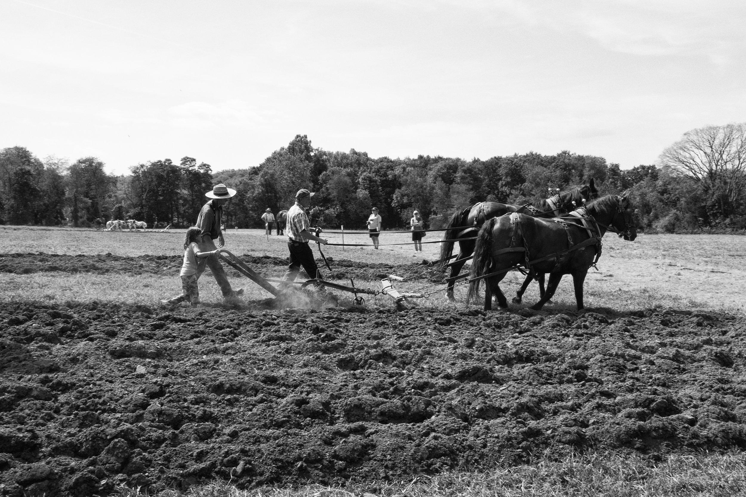 Plowing the fields 2