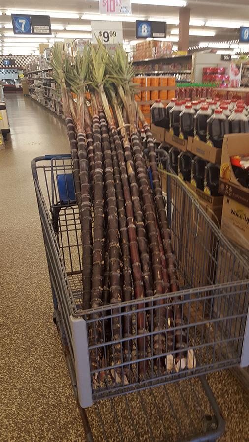 AsianSupermarket_001_Nieh.jpg