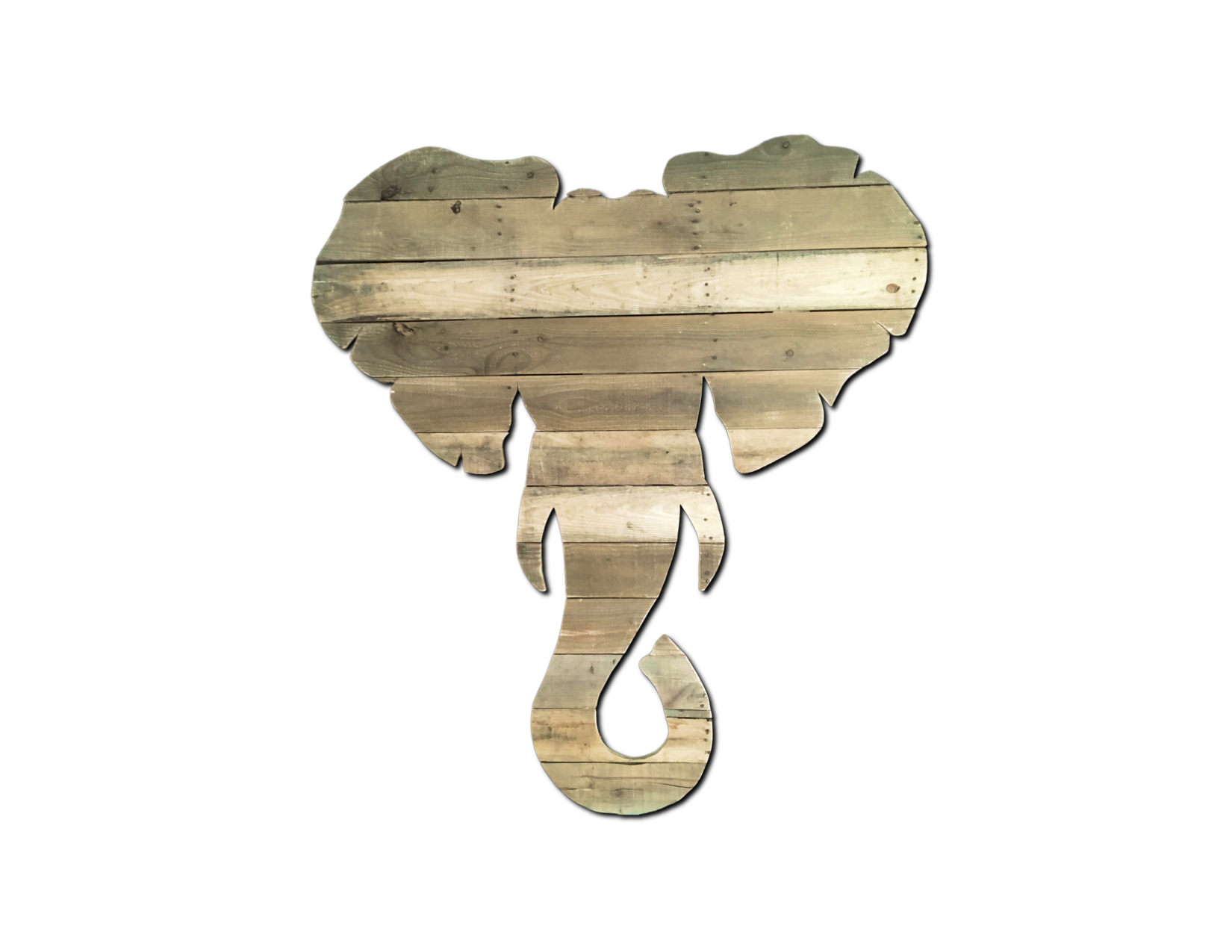 Elephant in the Room.png
