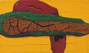 DARÍO BASSO  07.02.08 - 18.04.08
