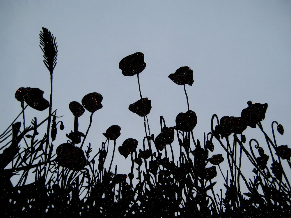 Dream flowers (amapolas)