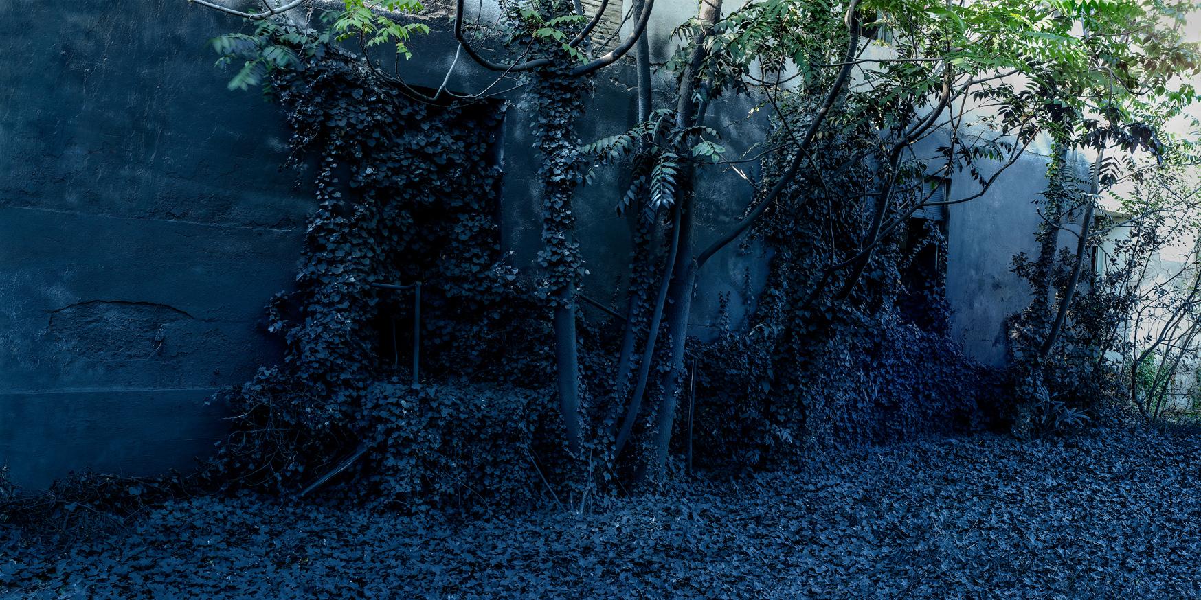 ATAVIAR ARQUITECTURA:LA EXPLORACIÓN DEL COLOR NEGRO. Cromalux 70 x 140 cm