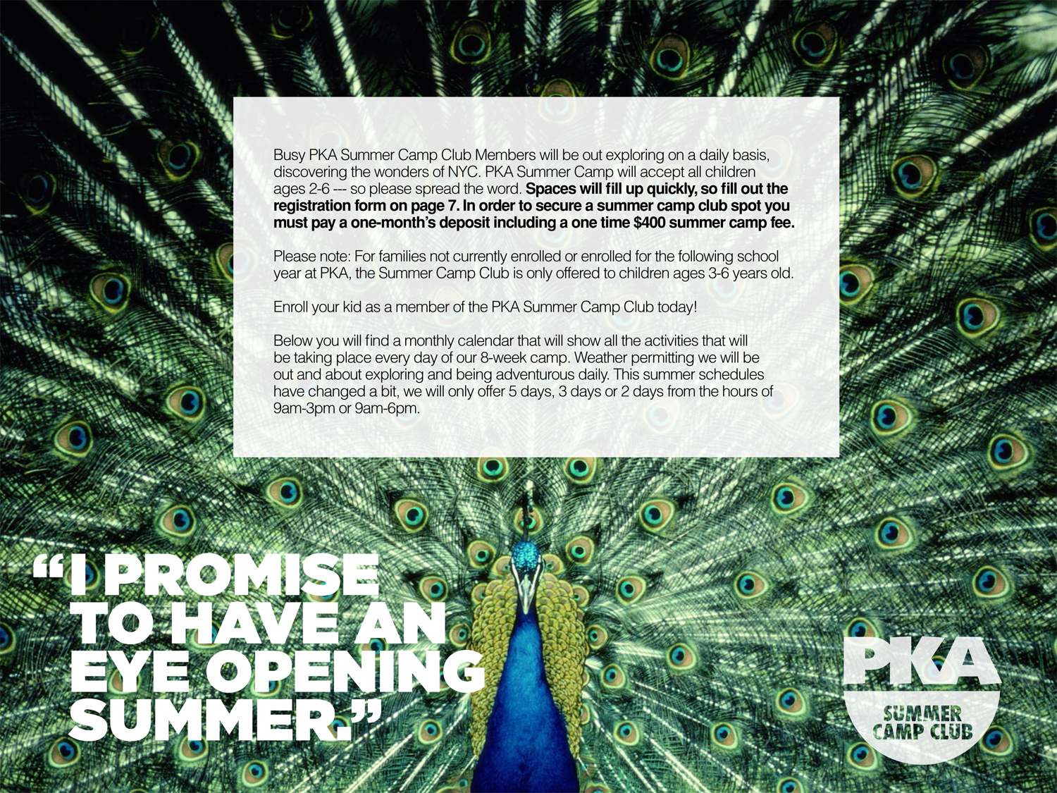 PKA Summer Camp Club Brochure-3.jpg