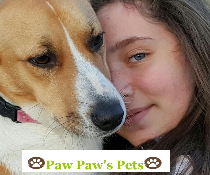 Paw Paw's Pets has partnered with ALIVE Rescue Memphis to provide our fosters with daycare for pups in our program! They provide a centrally located facility for your daycare, boarding, and grooming needs in the heart of the Broad Avenue Arts District.