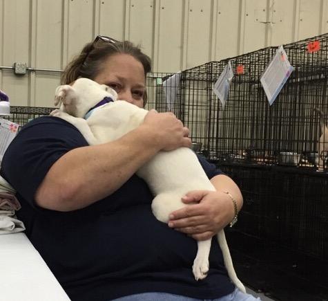 Cynthia-Board Member, Alive Rescue Memphis