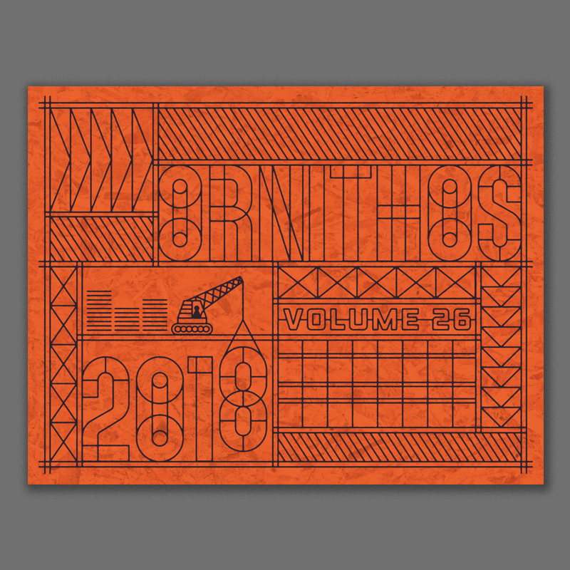 Another colorway - safety orange + material textures.