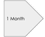 1 month.jpg