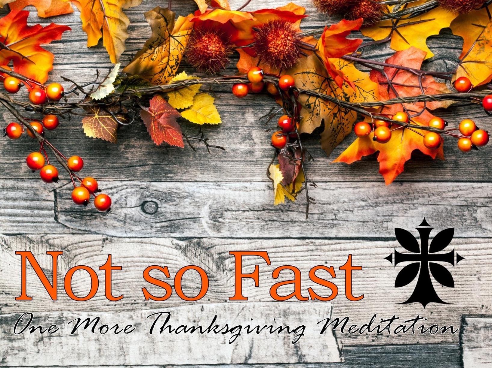 November 27, 2016 ~ Not So Fast: One More Thanksgiving Meditation (Psalm 30) ~ Pastor Jason Pilchard