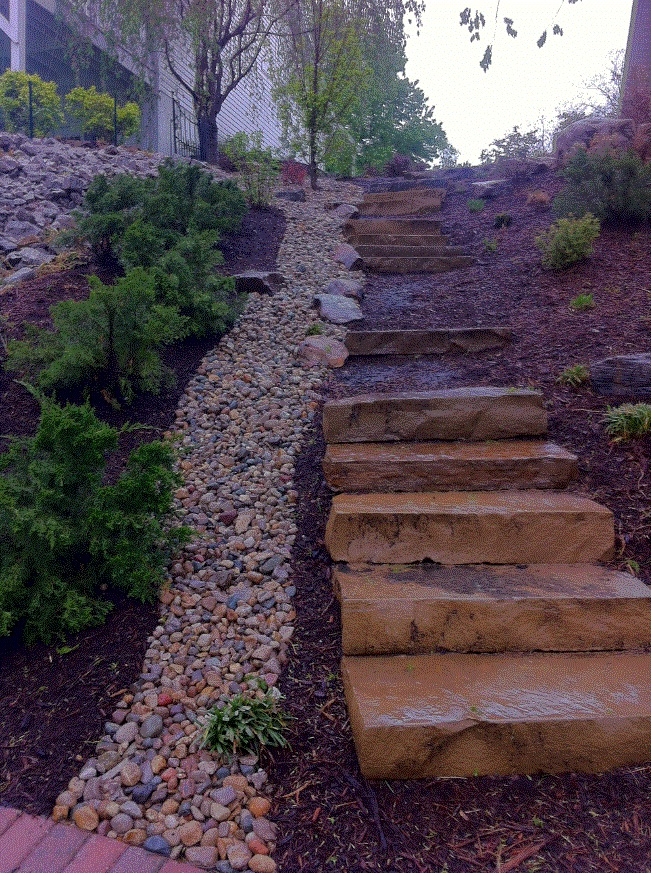 Steps Picture 6.jpg