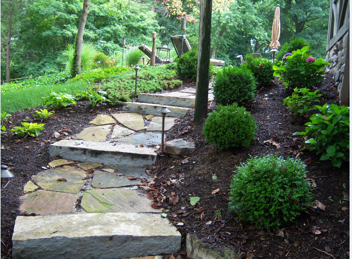Steps Picture 4 .jpg