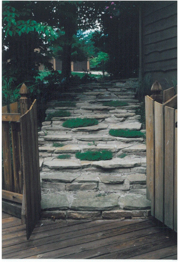 Steps Picture 3 .jpg