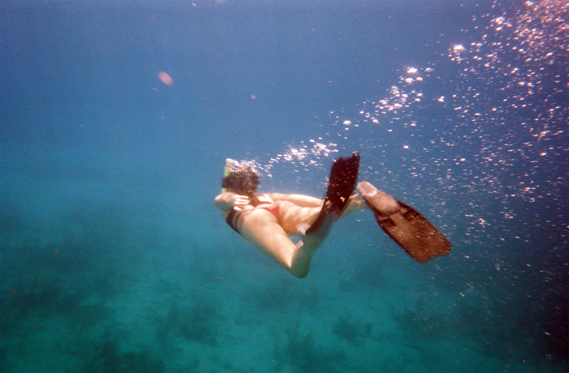 Snorkeling the drop off