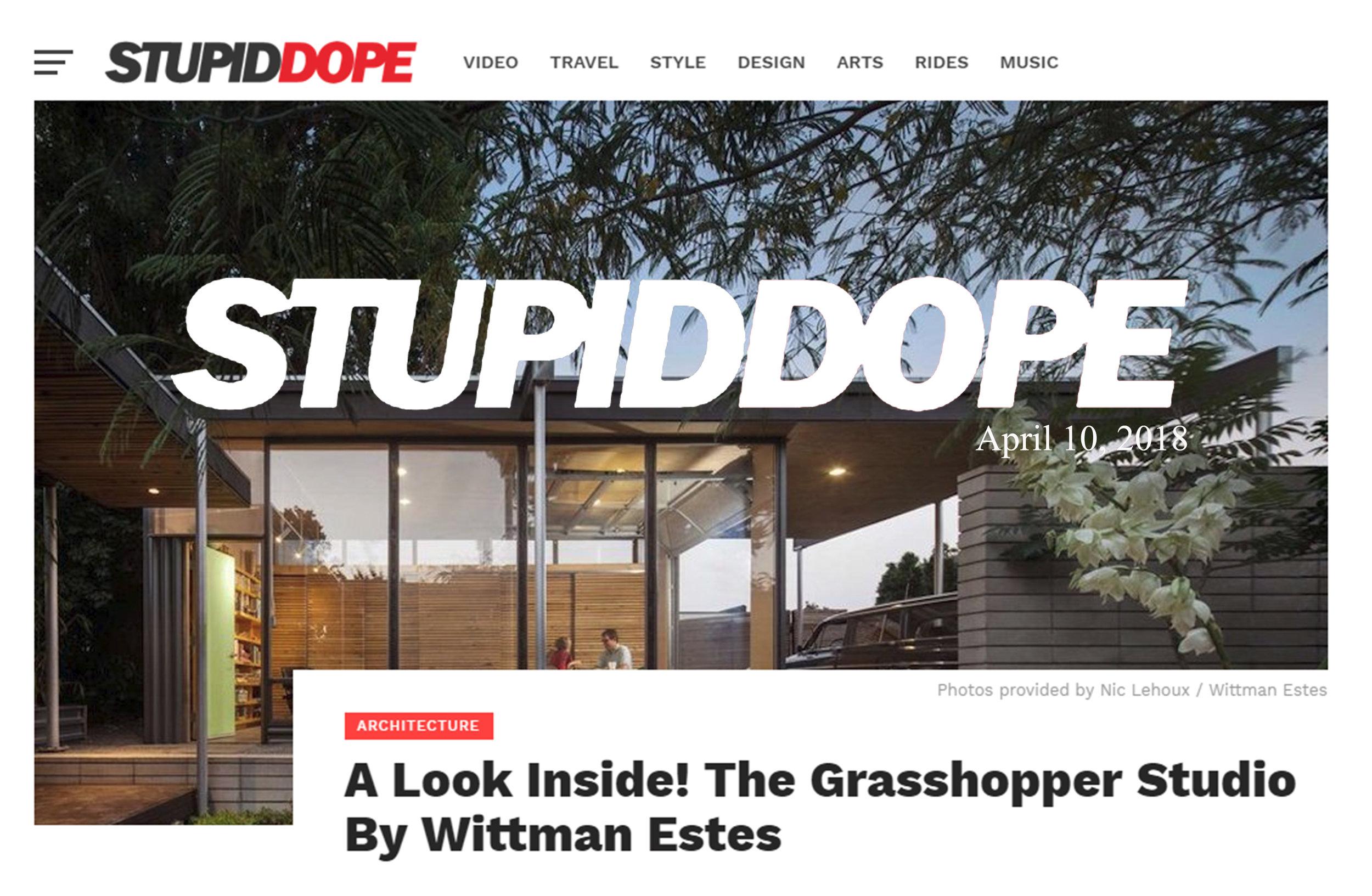 Stupid Dope - Grasshopper