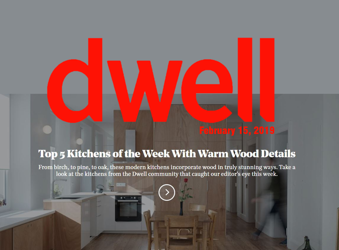 Dwell - Wood Kitchens