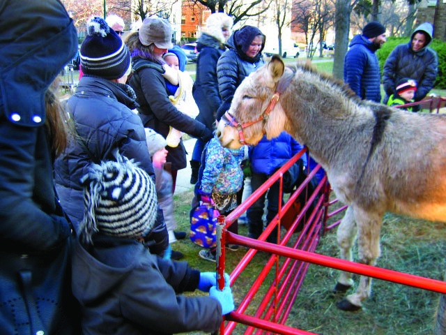 1.46 Nativity Donkey welcom.JPG